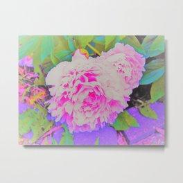 Electric Pink Peonies in the Garden Metal Print