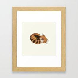 Baby Red Panda (Off-White) Framed Art Print