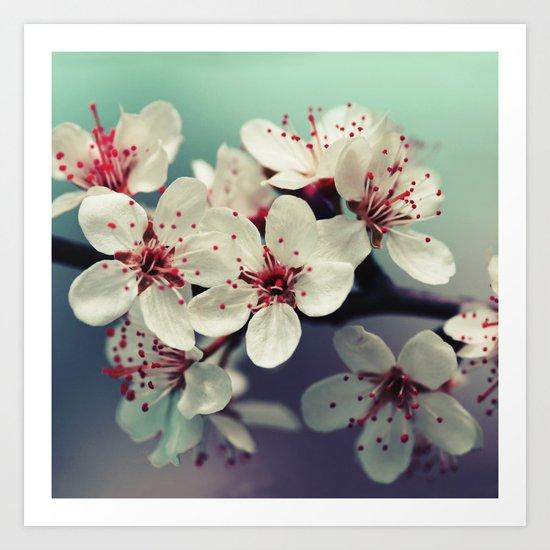 Cherry Blossom, Cherryblossom, Sakura, Vintage Style Art Print