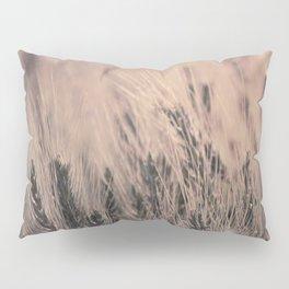 Barley-Pink Pillow Sham