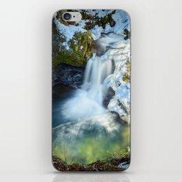 Paradise Falls 1 iPhone Skin