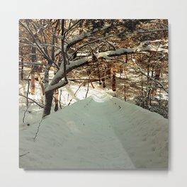 Snowshoeing through Vaughan's Woods Metal Print