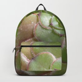 Radiating succulent Backpack