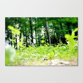 thoughtful spot Canvas Print