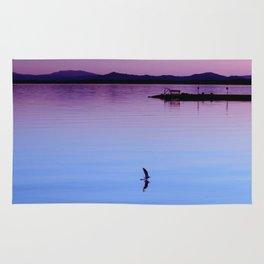 Water landing at sunset Rug