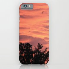 Burning Sunrise iPhone 6s Slim Case