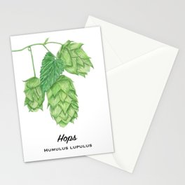 Beer Hops Botanical Painting Stationery Cards