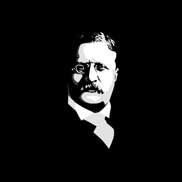 Teddy Roosevelt Comforters