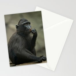 Celebes Crested Macaque Youngster Stationery Cards