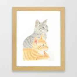 Two Kittens Framed Art Print