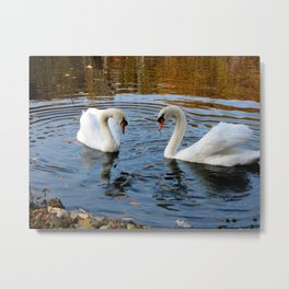 Swans Bowing Metal Print