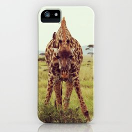 Giraffe Wants to Know iPhone Case