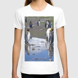 King Penguin Reflection T-shirt
