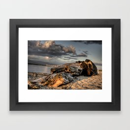 Another log and Sunset Framed Art Print
