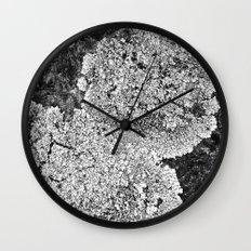 Lichen Home Wall Clock