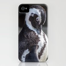 African Penguin iPhone (4, 4s) Slim Case