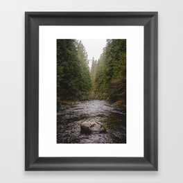 Salmon River II Framed Art Print