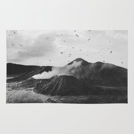 Birds Over Mount Bromo, Indonesia Black and White Rug