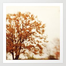 fall is just a dream Art Print