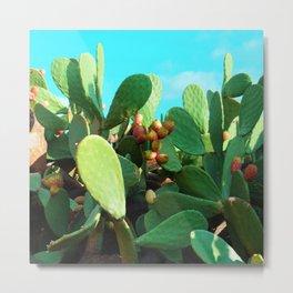 Cactus fruit turquoise Metal Print