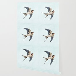 Barn Swallow - option Wallpaper