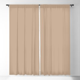 Beige Solid Color Pairs with Sherwin Williams Haven 2020 Forecast Color - Intenso SW9096 Blackout Curtain