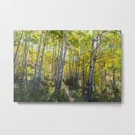 Fall Hikes. Metal Print