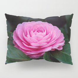 Pink Perfection Camellia Japonica is Blooming Pillow Sham
