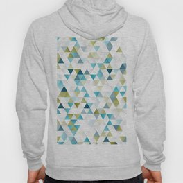 Low Polly Hoody