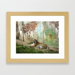 Tigers Play Framed Art Print
