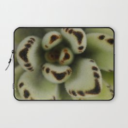 Green suculenta Laptop Sleeve