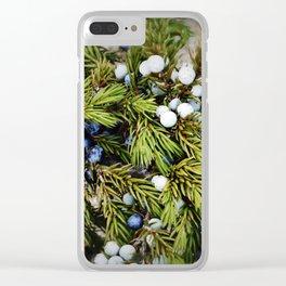 Juniper Clear iPhone Case