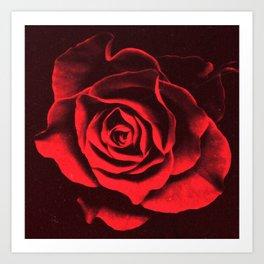 Red as Roses Art Print