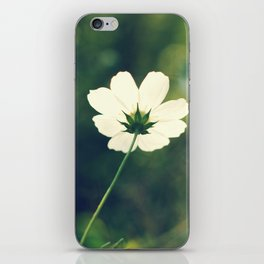 white cosmos iPhone Skin