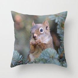 Mr. Squirrel ~ I Throw Pillow
