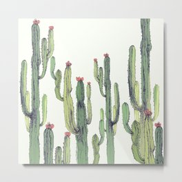 Cactus field Metal Print