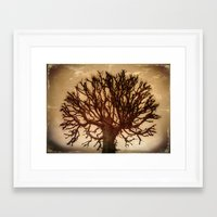 crown Framed Art Prints featuring Crown by Armine Nersisian