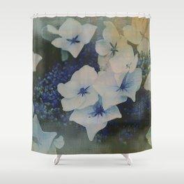 Hydrangea photo Shower Curtain