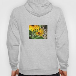 Black-eyed Susans and a Busy Bee Hoody