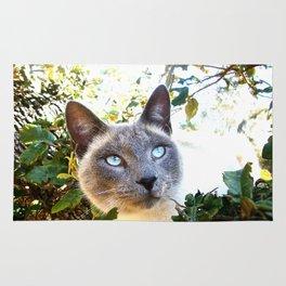 Siamese Cat in Tree Rug