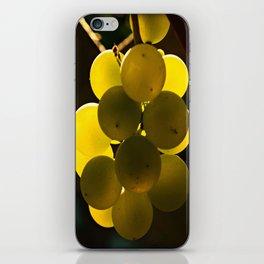 Da Vino iPhone Skin