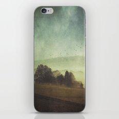 Hidden Houses iPhone & iPod Skin