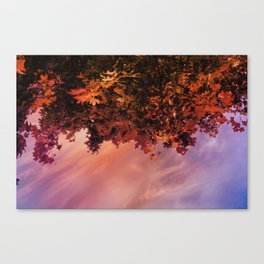 Ready for the Fall Canvas Print
