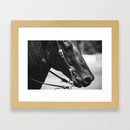 STEED Framed Art Print