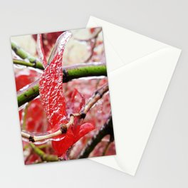 Red Leaf in Ice Stationery Cards