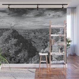 Grand Canyon No. 7 bw Wall Mural