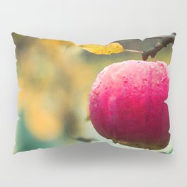 Apples in the fall Pillow Sham