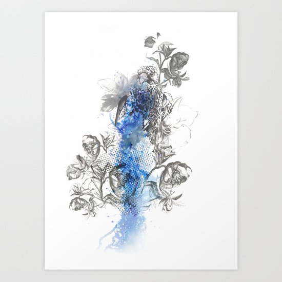 Hawk Illustration Art Print