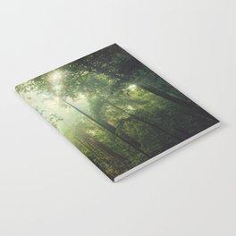 Penetration Notebook