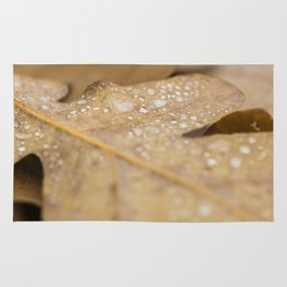 Wet forest #2 Rug
